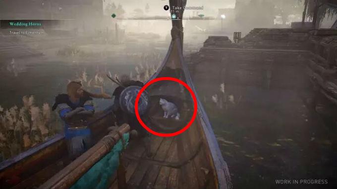 Gato en Assassin's Creed Valhalla