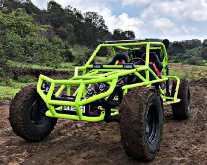 Hot Wheels hulk