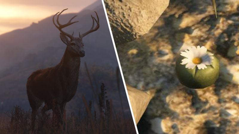GTA V Online: Así puedes conseguir peyotes en Grand Theft Auto