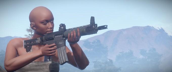 rifle lr-300 de Rust
